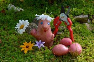 Весёлый садовник.