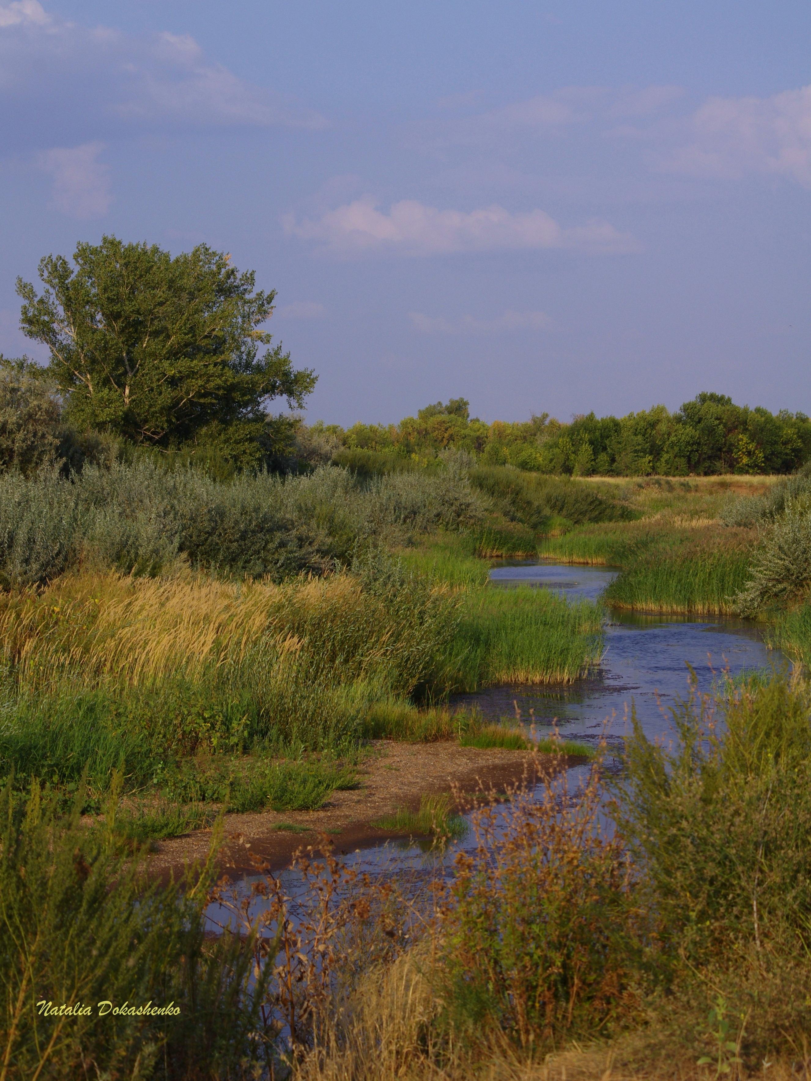 Степная речка