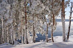 На картине у зимы.jpg